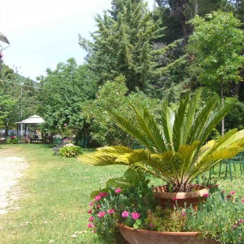giardino5